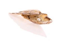 Perla dell'ostrica Fotografie Stock Libere da Diritti