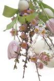 Perla di sakura del Salix del tulipano dell'uovo di Pasqua Fotografia Stock Libera da Diritti