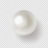 Perla en fondo transparente Imagen de archivo