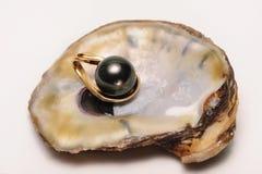 Perla negra del mar del sur Fotografía de archivo libre de regalías