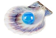 Perla y shell azules Fotografía de archivo