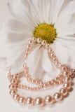 Perlas adornadas Fotografía de archivo libre de regalías