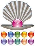 Perlas coloridas y un shell Fotos de archivo
