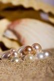 Perlas en la arena Foto de archivo