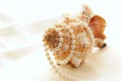 Perlas envueltas alrededor de la concha Foto de archivo libre de regalías