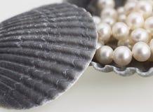 Perlas y shelles del mar Foto de archivo libre de regalías