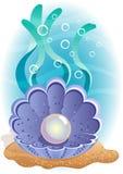 perle illustration stock