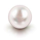 Perle blanche Images libres de droits