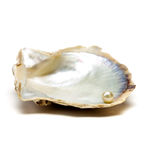 Perle de l'huître n Photo libre de droits