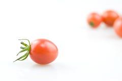 Perle de tomate Photographie stock libre de droits