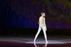 Perle di balletto Immagini Stock