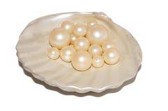 Perle im Oberteil stockbild