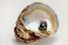 Perle noire de mer du sud images libres de droits