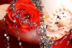 Perle rouge de Rose Photographie stock