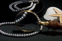 Perle in una scatola nera Immagini Stock Libere da Diritti