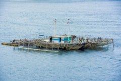 Perlen Sie den Bauernhof und auf Pazifischen Ozean schwimmen, Indonesien stockfotografie