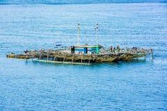 Perlen Sie den Bauernhof und auf Pazifischen Ozean schwimmen, Indonesien lizenzfreies stockfoto