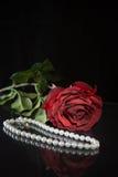 Perlen und Rotrose auf schwarzem Hintergrund stockfoto
