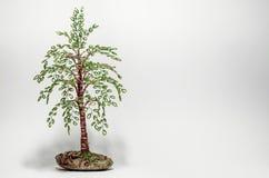 Perlenbaum Lizenzfreies Stockbild