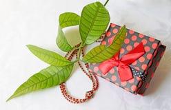 Perlenbesetzte Halskette mit einer Geschenkbox Stockfoto