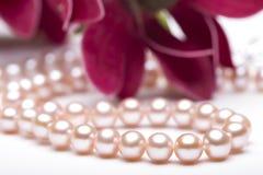 Perlenhalskette in der Blume Stockfoto