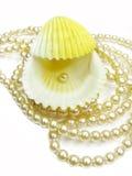 Perlenkorne und Seeshell Stockbild