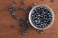 Perles brillantes de graine Photos libres de droits