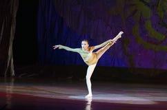 Perles de ballet Photographie stock libre de droits