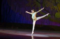 Perles de ballet Image stock