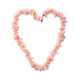 Perles de corail sous forme de coeur sur un fond blanc pur Photos stock