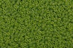 Perles de graine d'Olie Images stock