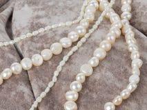 Perles de perle sur un tissu de velours Image libre de droits