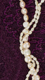 Perles de perle sur un tissu pourpre de dentelle Photographie stock