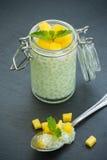 Perles de sagou avec du lait de noix de coco Images stock