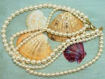 Perles et coquilles Photos libres de droits