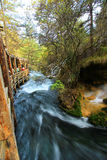 Perlez la cascade de bancs, Jiuzhaigou, au nord de province de Sichuan, la Chine photographie stock