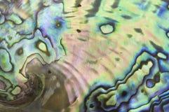 Perlmutthintergrund Stockbild