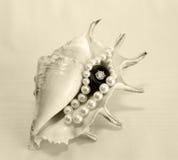 Perls e diamantes Imagens de Stock