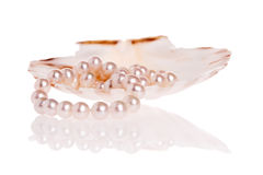Perlt Halskette Lizenzfreie Stockbilder