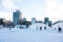 PERM, Rosja, Luty, 06 2016: dorosli z dziećmi w lodowatym Zdjęcie Royalty Free