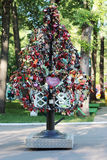 PERM, RUSSIA - JUN, 23, 2014: Tree with wedding locks. In Gorky Park stock photo