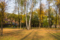 Perm, Russia - September 26.2016: Beautiful autumn park Stock Photography