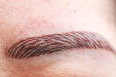 Permanent eyebrow tattoo. For makeup stock photography