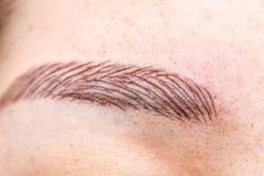 Permanent eyebrow tattoo. For makeup Stock Photos