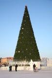 PERMANENT - 17 FEBRUARI: Kerstboom in Ijsstad Royalty-vrije Stock Afbeelding
