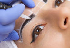 Permanent make-up for eyebrows of beautiful woman with thick brows in beauty salon. Stock Photos