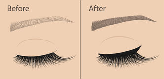 Permanent makeup. Eyeliner and correction eyebrow shaping. Before and after. Salon procedure. Stock Image