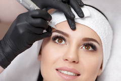 Permanent makeup. Tattooing of eyebrows. Permanent makeup. Permanent tattooing of eyebrows. Cosmetologist applying permanent make up on eyebrows- eyebrow tattoo royalty free stock image