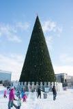 PERMANENT, Rusland, 06 Februari, 2016: De stad van het ijzige nieuwe jaar op Espl Stock Foto's
