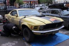 PERMANENT, RUSLAND - JUNI 29, 2016: Rep van Ford Mustang van de deelnemersverzameling Royalty-vrije Stock Fotografie